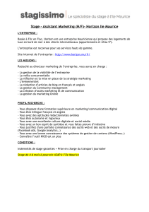 Stage – Assistant Marketing (H/F)– Horizon Ile Maurice !