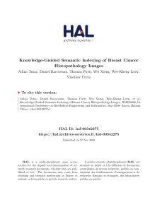 Knowledge-Guided Semantic Indexing of Breast Cancer Histopathology Images