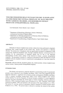VOLUME-WEIGHTED MEAN NUCLEAR VOLUME IN DYSPLASTIC