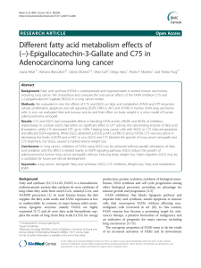 Different fatty acid metabolism effects of −)-Epigallocatechin-3-Gallate and C75 in (