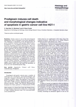 Prodigiosin induces cell death and morphological changes indicative