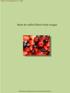 140723-note veille fruits rouges-sl