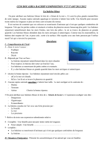 composition-2-la-baleine-3-am