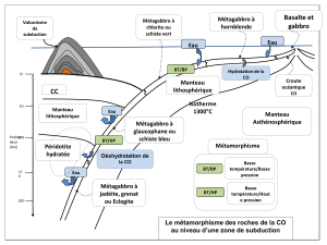 subduction terminale