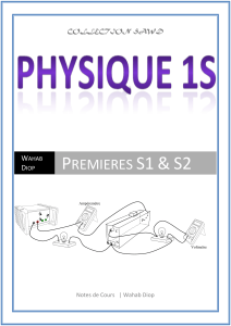 PHYSIQUE WPS