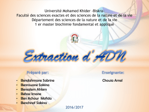 Extraction d'ADN ppt