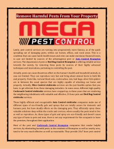Remove Harmful Pests From Your Property