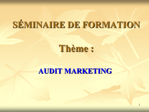 AUDIT MARKETING final (3)