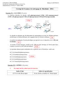 corrigé  type rattrapage  biochimie 08-09-2014