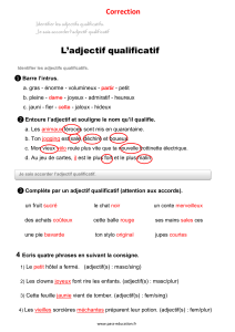 Adjectif-qualificatif-Correction