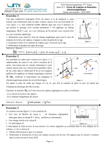 TD2  Force de laplace et induction