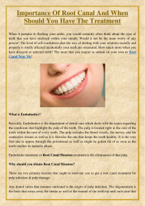 Importance Of Root Canal And When Should You Have The Treatment