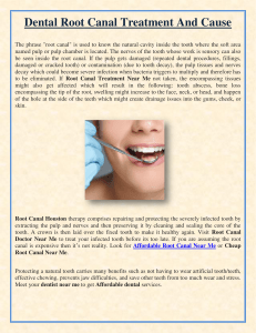 Dental Root Canal Treatment And Cause
