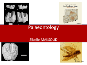 1-Palaeontology course
