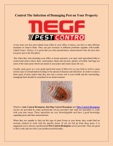 Control The Infection of Damaging Pest on Your Property-converted