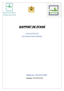 Rapport de stage  AVICENNE gastro