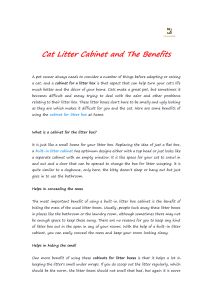 Cat Litter Cabinet and The Benefits