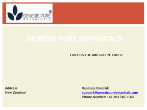 Can You Buy Cbd Oil In New Zealand