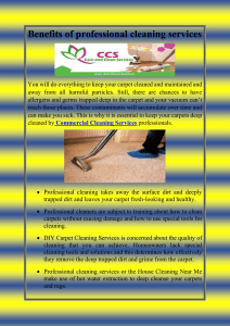 Benefits of professional cleaning services-converted