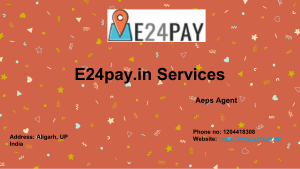 Aeps Service Provider Companies