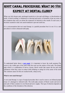 Root Canal Procedure What Do you Expect at Dental Clinic
